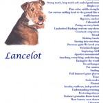 Lance Poem
